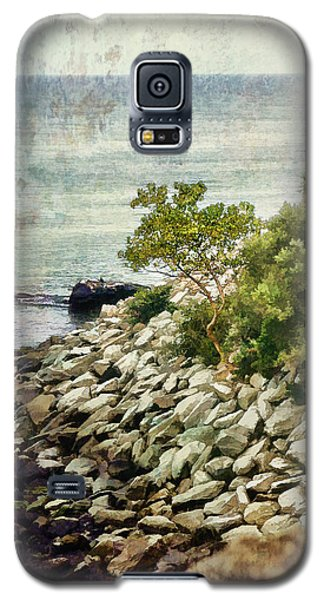 Newport Cliff Walk Galaxy S5 Case