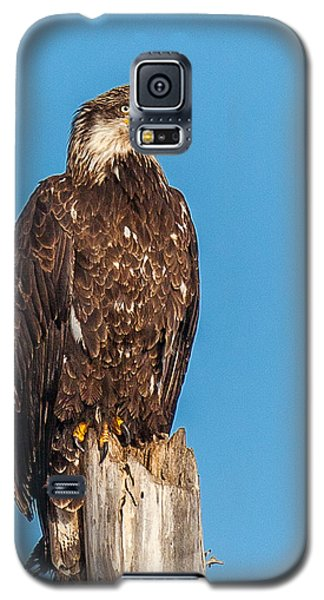 Next Generation Galaxy S5 Case