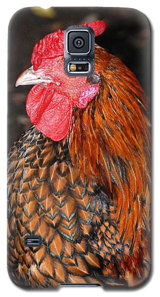 Galaxy S5 Case featuring the photograph Nice Breast by Kathy Gibbons