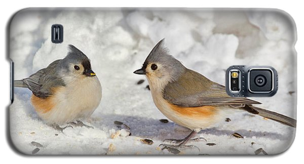 Nice Pair Of Titmice Galaxy S5 Case by John Absher