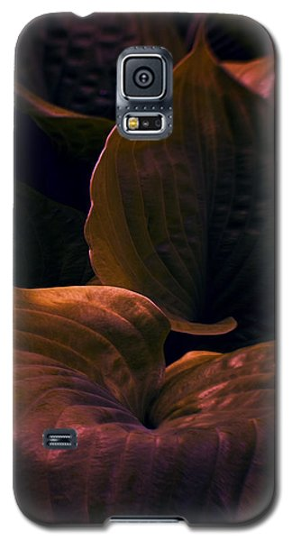 Night Abyss Galaxy S5 Case by Jean OKeeffe Macro Abundance Art