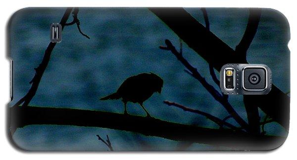 Night Bird Galaxy S5 Case
