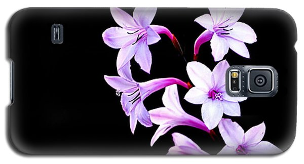 Galaxy S5 Case featuring the photograph Night Color by AJ  Schibig