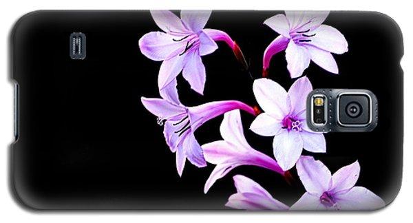 Night Color Galaxy S5 Case by AJ  Schibig