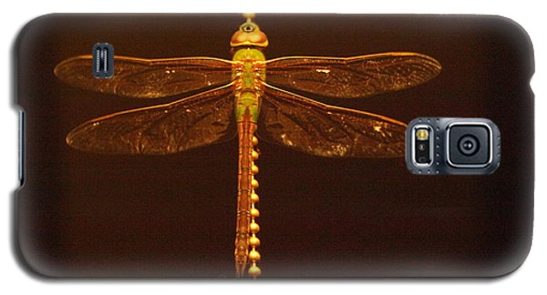 Night Dragon Galaxy S5 Case