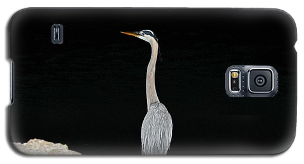 Night Of The Blue Heron 2 Galaxy S5 Case