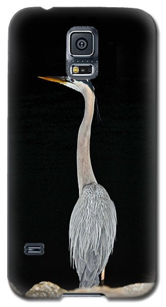 Night Of The Blue Heron 3 Galaxy S5 Case