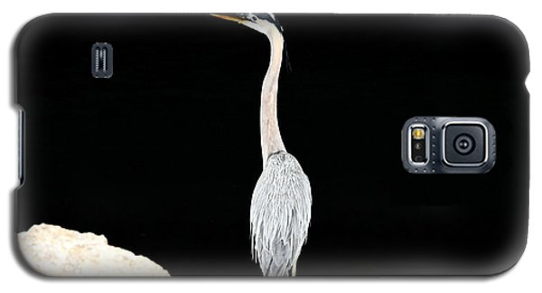 Night Of The Blue Heron  Galaxy S5 Case