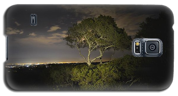 Night Glow Of A Tree Galaxy S5 Case by Alex King