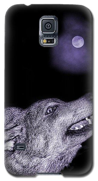 Galaxy S5 Case featuring the photograph Night Wolf by Angel Jesus De la Fuente