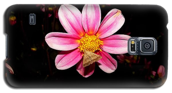 Nighttime Visitor Galaxy S5 Case