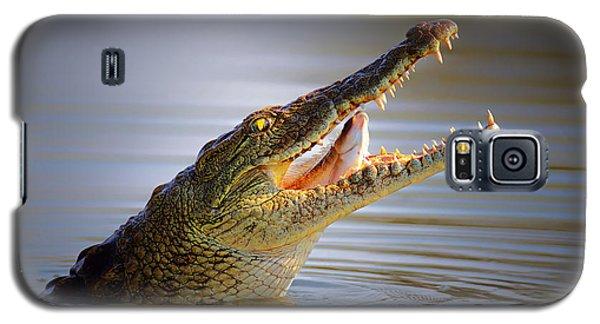 Nile Crocodile Swollowing Fish Galaxy S5 Case by Johan Swanepoel