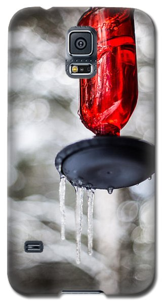 No Hummingbirds Today Galaxy S5 Case by Aaron Aldrich