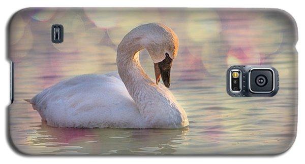 Shy Swan Galaxy S5 Case