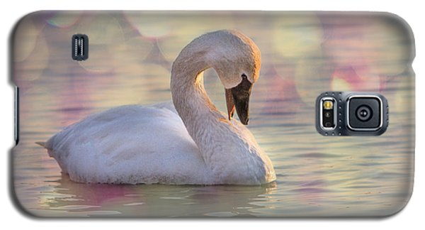 Shy Swan Galaxy S5 Case