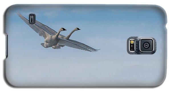 Trumpeter Swans Tandem Flight Galaxy S5 Case