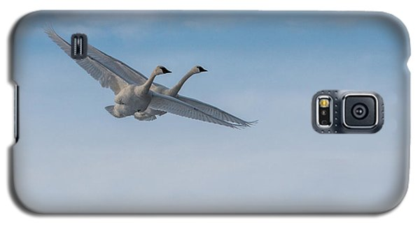 Trumpeter Swan Tandem Flight I Galaxy S5 Case