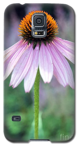 Galaxy S5 Case featuring the photograph No Moment Like The Present by Mary Lou Chmura