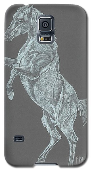 Galaxy S5 Case featuring the drawing No Name by Carol Wisniewski