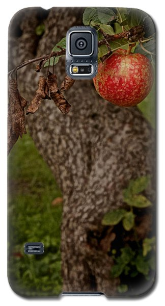 No Sin Galaxy S5 Case by Odd Jeppesen