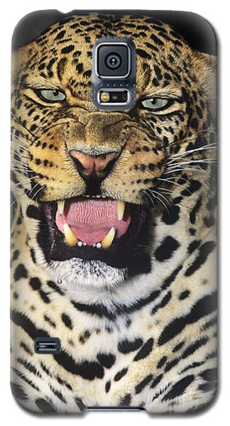 No Solicitors African Leopard Endangered Species Wildlife Rescue Galaxy S5 Case