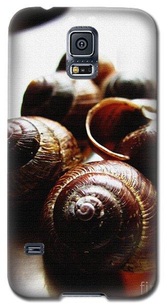 Nobody Home Galaxy S5 Case by Martin Howard