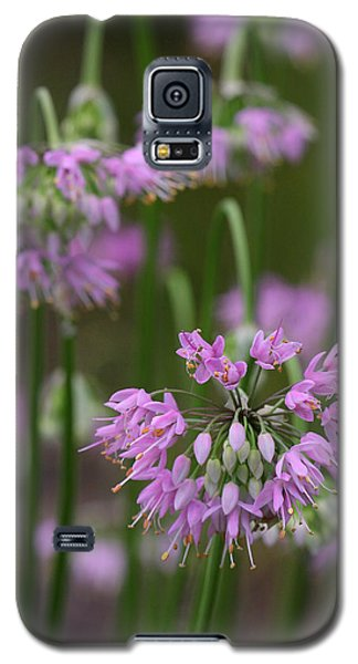 Galaxy S5 Case featuring the photograph Nodding Wild Onion by Daniel Reed