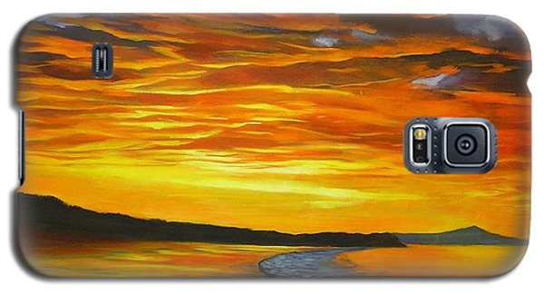 Galaxy S5 Case featuring the painting Noosa Sunset by Chris Hobel