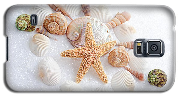 North Carolina Sea Shells Galaxy S5 Case