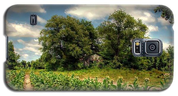 North Carolina Tobacco Farm Galaxy S5 Case by Benanne Stiens