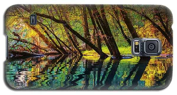 North Chick Impression Galaxy S5 Case by Steven Llorca