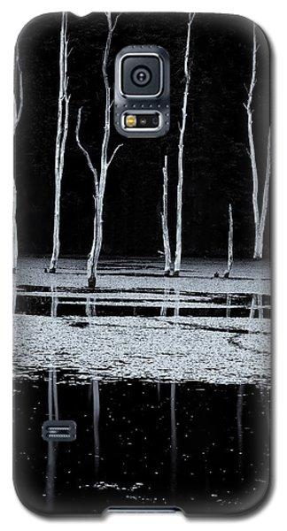 North Pond Twilight Galaxy S5 Case