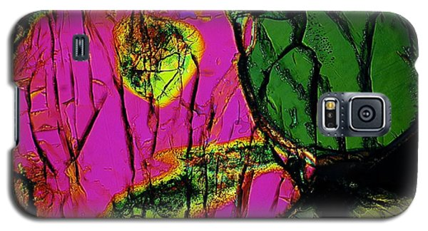 Love And Jealousy Galaxy S5 Case