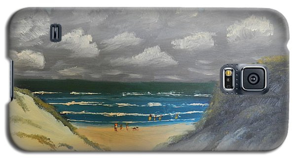 Galaxy S5 Case featuring the painting North Windang Beach by Pamela  Meredith