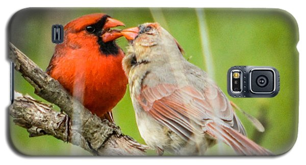 Northern Cardinal Male And Female Galaxy S5 Case
