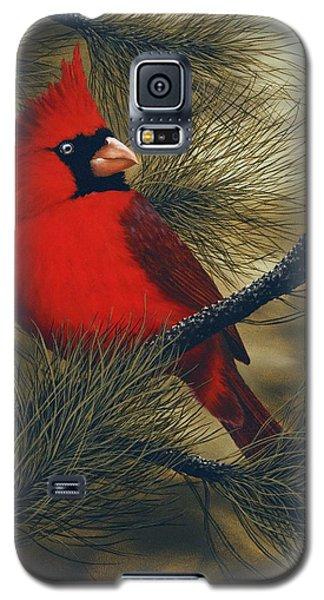 Northern Cardinal Galaxy S5 Case by Rick Bainbridge