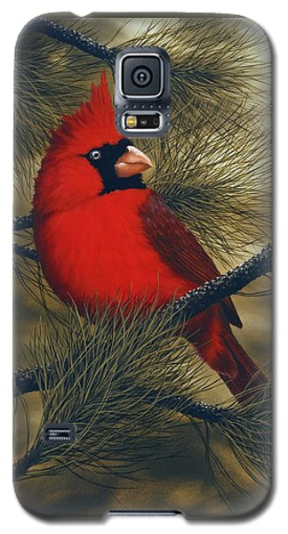 Northern Cardinal Galaxy S5 Case by Rick Bainbridge