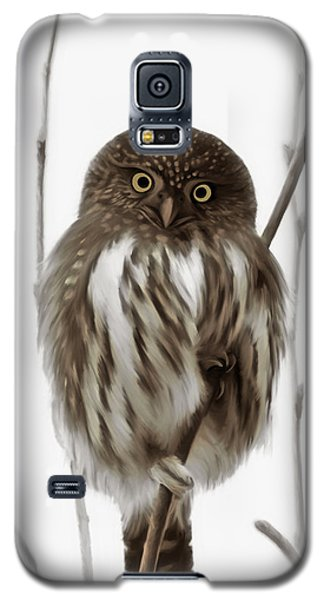 Northern Pygmy Owl - Little One Galaxy S5 Case