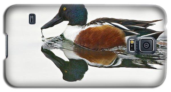 Galaxy S5 Case featuring the photograph Northern Shoveler Drake At Ketring Lake by Stephen  Johnson