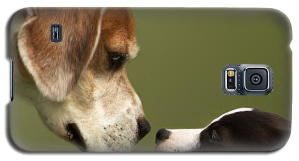 Nose To Nose Dogs 2 Galaxy S5 Case