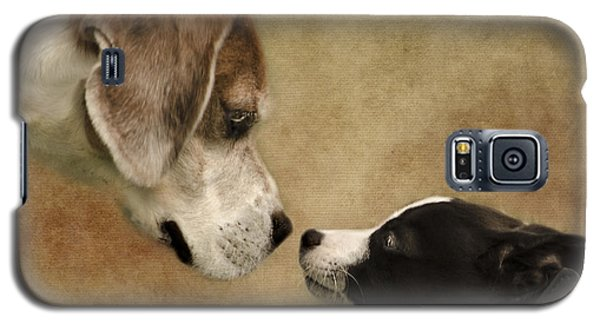 Nose To Nose Dogs Galaxy S5 Case