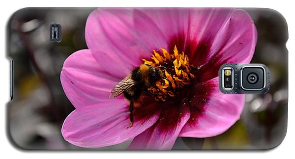 Nosy Bumble Bee Galaxy S5 Case