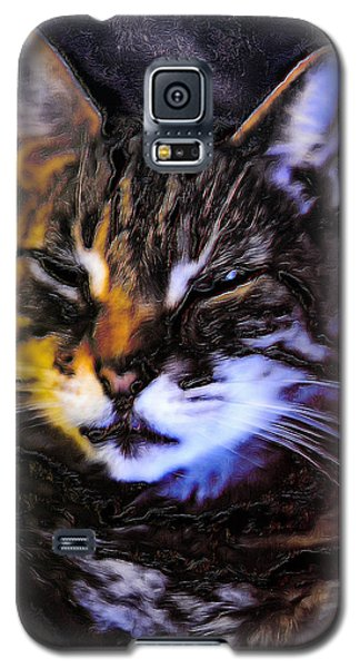 Not Amused Galaxy S5 Case by Carlee Ojeda