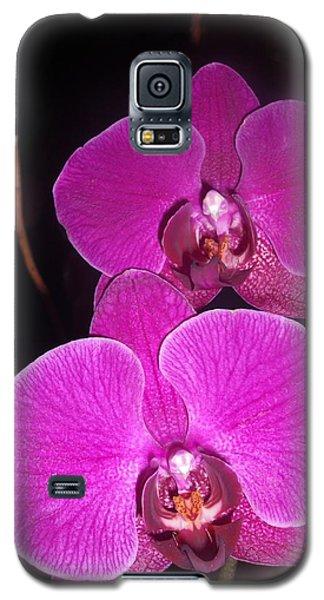 Joyful Galaxy S5 Case