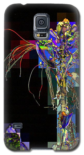 Galaxy S5 Case featuring the photograph Not In Paradise by Jodie Marie Anne Richardson Traugott          aka jm-ART