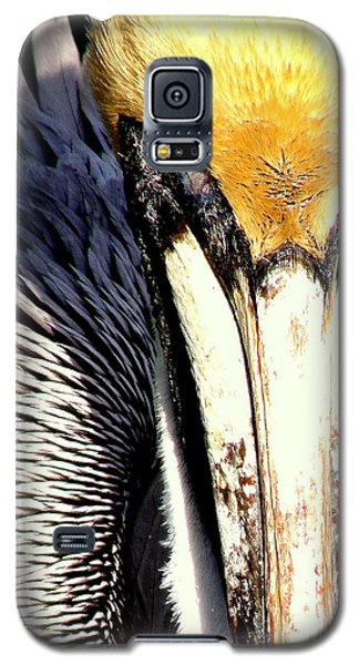Galaxy S5 Case featuring the photograph Not My Fish by Antonia Citrino