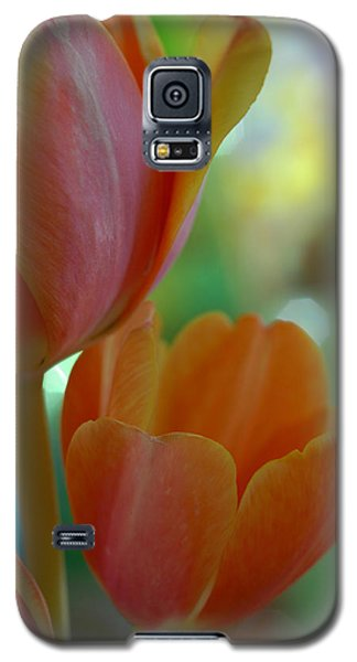 Nothing As Sweet As Your Tulips Galaxy S5 Case by Donna Blackhall
