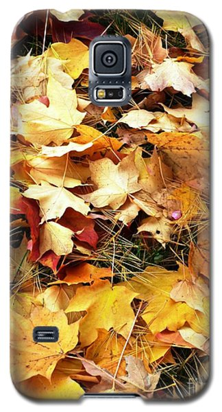 Galaxy S5 Case featuring the photograph Nothing But Leaves by Mike Ste Marie