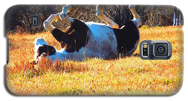 Galaxy S5 Case featuring the photograph November Pasture Bliss by Anastasia Savage Ealy
