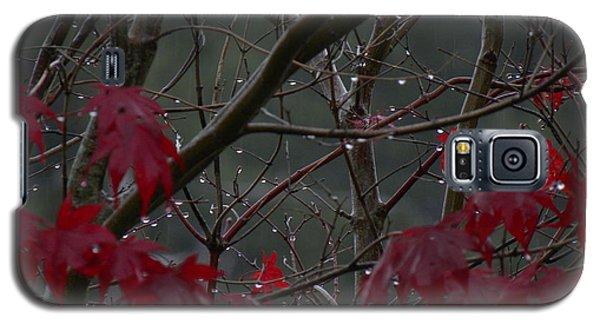 November Rain Galaxy S5 Case by Edwin Alverio